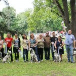Results of bulgarian dalmatians on NIS 2016